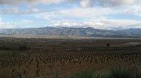 Weinberge und Landschaft des Bierzos nahe Cacabelos