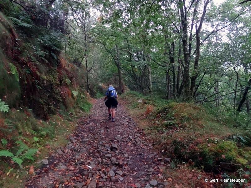 steiler Waldweg