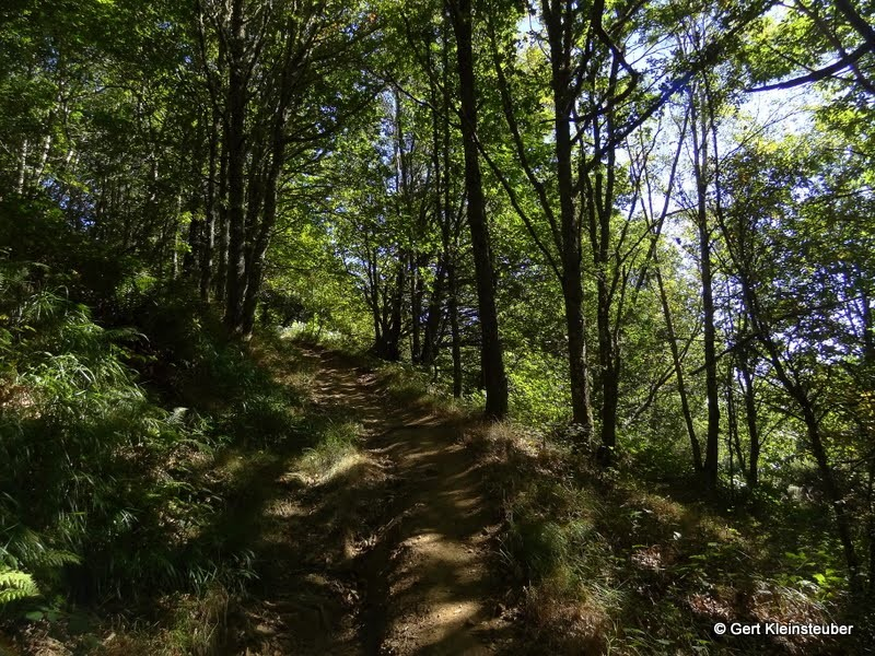 Steiler Weg nach A Lastra