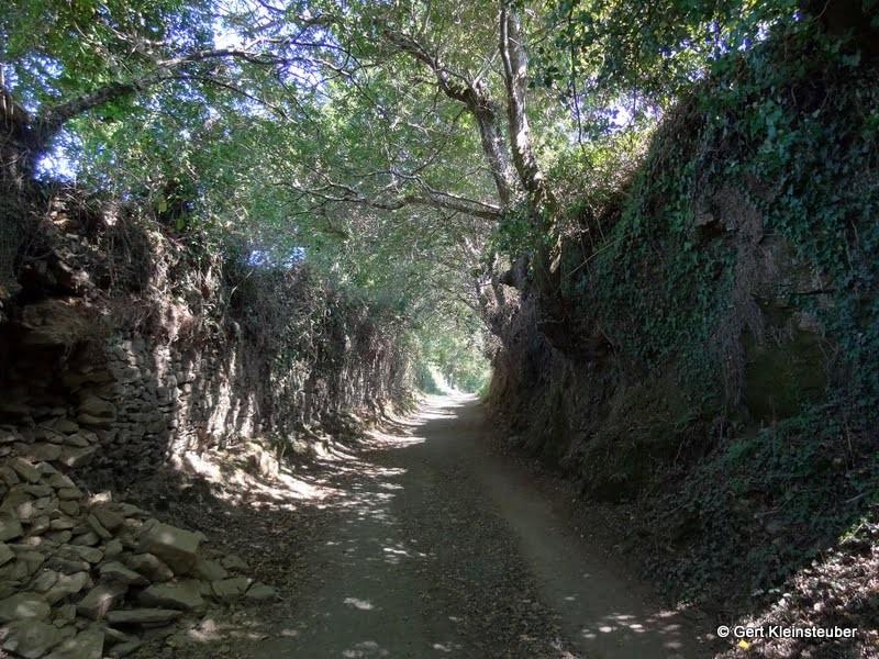 Hohlweg hinter Arzua