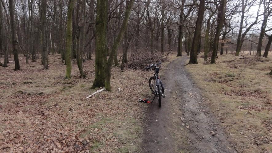 Schlammiger Weg vor Lindenthal