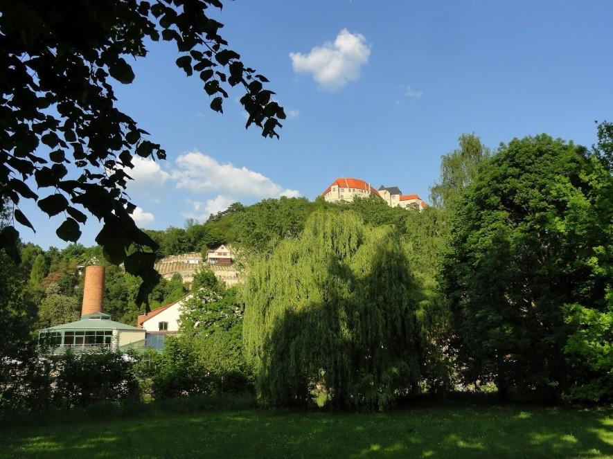 Blick über die Unstrut zur Neuenburg
