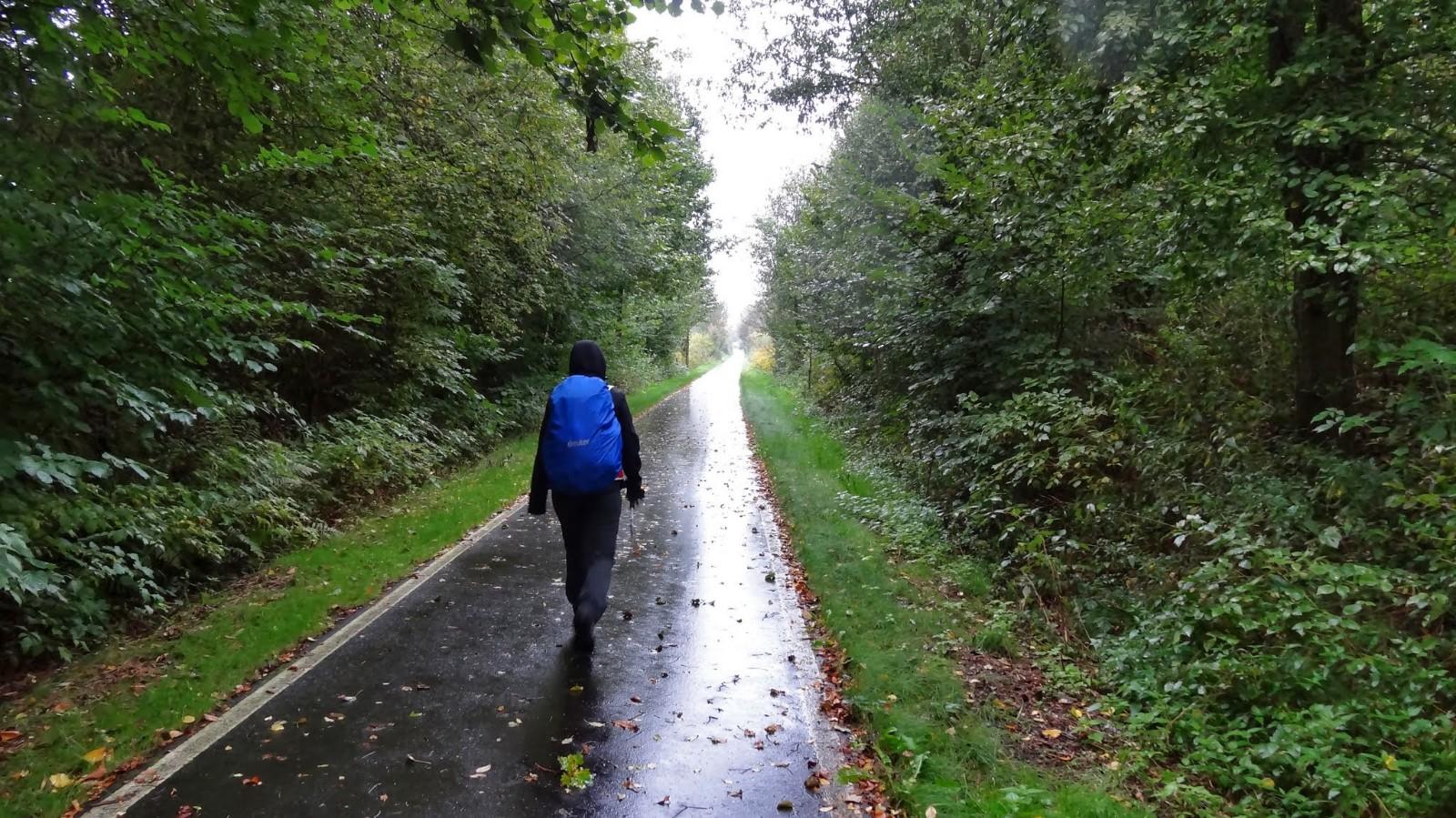 Weg nach Ebersbach