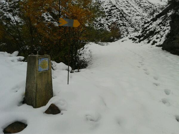 Camino_013