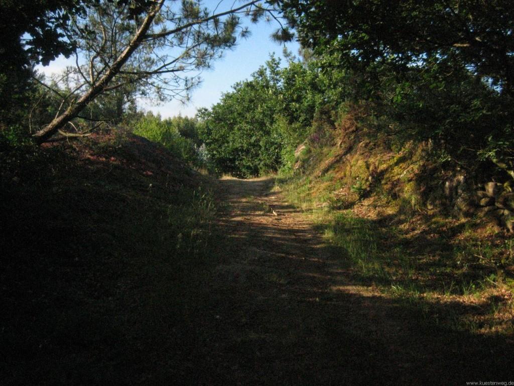 BURNOUT, Jakobsweg an der Küste, Küstenweg