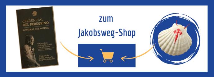 Jakobswegmuschel online kaufen